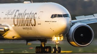 Download For the BOEING 777 FANS - BOEING 777-300 landing of Emirates and Etihad Video