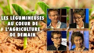 Download Les légumineuses et l'agriculture de demain - Emission 19, 3ème partie - L'Esprit Sorcier Video