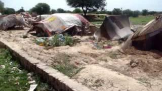 Download gypsy,banjaran,in village scene,kallar syedan,pothwar.pind,beval Video