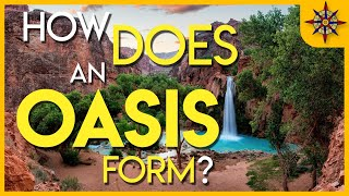 Download How Does An Oasis Form? Video