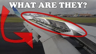Download What are those things on the aircraft wing? Video