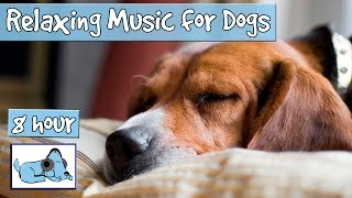 Download OVER 8 HOURS of Sleep Music for Dogs! Help Your Dog Calm Down and Get to Sleep with our Playlist! Video