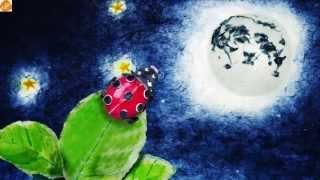 Download Bedtime Story for Children - Lily and the Moon Video