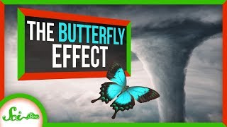 Download How a Butterfly's Wingbeat CAN Change the Weather Video