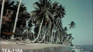 Download Singapore - The Lion City, 1957 Video