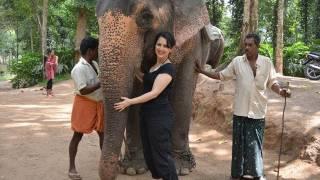 Download My Trip to India - Part III: Kerala - The Elephants of Thekkady Video