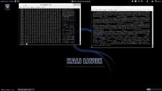 Download Heartbleed Exploit in Action Video