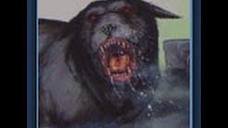 Download Part 1 Phantom Black Dogs - Animal X Classic   Storyteller Media Video