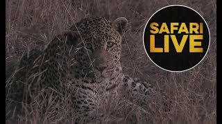 Download safariLIVE - Sunset Safari - July 10, 2018 Video