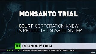 Download Monsanto to pay $289mn to California man who developed non-Hodgkin's lymphoma using Roundup Video