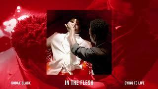 Download Kodak Black - In The Flesh Video
