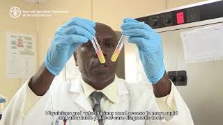 Download Innovators can help combat antimicrobial resistance Video