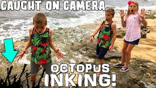 Download I Got INKED By an Octopus!! Video
