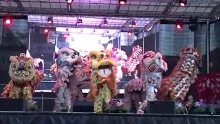 Download (múa sư tử ) Dong Thanh Lion Dance on Stage - Cabramatta Moon Cake Festival 4th Sept 2016 Video