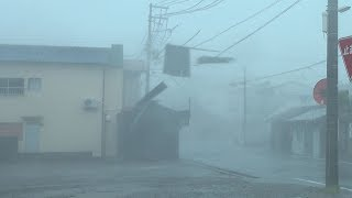 Download Violent Wind, Flying Debris And Damage - Typhoon Jebi Hammers Japan 4K Stock Footage Video