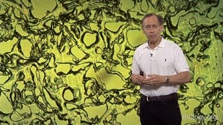 Download Robert S. Langer (MIT) Part 2: Drug Delivery Technology: Present and Future Video
