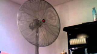 Download Dayton Industrial Pedestal Fan Video