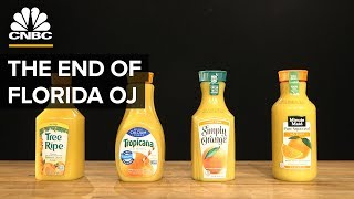 Download Why Most Orange Juice Comes From Brazil, Not Florida Video