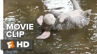 Download Christopher Robin Movie Clip - Eeyore Rescue (2018) | Movieclips Coming Soon Video