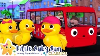 Download 5 Little Ducks On a Bus Song - Nursery Rhymes and Kids Songs | Baby Songs | Little Baby Bum Video