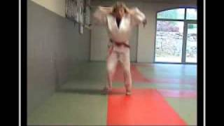 Download EXERCICES DE PREPARATION PHYSIQUE ORIENTATION JUDO CORE TRAINING AND CORE STABILITY Video