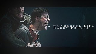 Download Harry Potter | A Wonderful Life Video