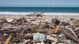 Download The top 10 most common beach trash items Video