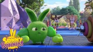 Download Cartoons For Children | SUNNY BUNNIES - WHO'S STRONGER ? | New Episode | Season 3 Video