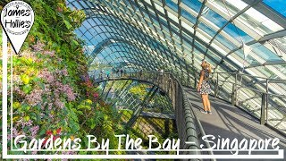 Download GARDENS BY THE BAY - Supertree Grove - Spectra Water Show - SINGAPORE   Barbster360 Travel Vlog Video