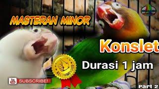 Download Masteran lovebird betina konslet minor,1 jam full speed pelan Video