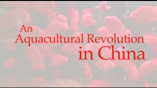 Download An Aquacultural Revolution in China Video