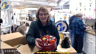 Download FFRC Boxes and FunRaiser Drawing 01-23-2020 Friends of Felines Rescue Center (FFRC) Video