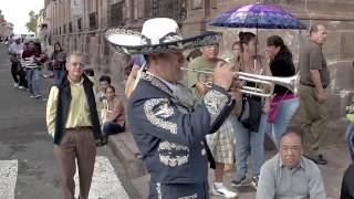 Download Flashmob Mariachi Morelia 2016 Video