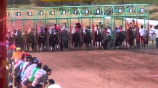 Download guyana horse racing Video