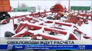 Download Свекловоды Алматинской области не получили расчета за прошлогодний урожай Video