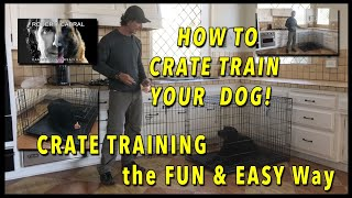 Download CRATE Training Your Dog - EVERYTHING You Need to Know to Get YOUR DOG to LOVE the CRATE Video