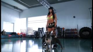 Download Pit Bull Jeans - Gracyanne Barbosa - Making of - Campanha Fitness Video