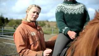 Download Íshestar - How to ride an Icelandic horse? Video