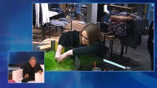 Download Ellen Looks Back at Her Favorite LOL Moments Video