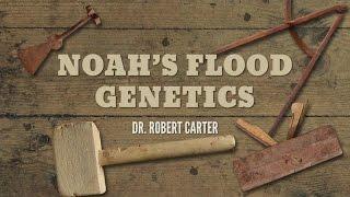 Download Origins: Noah's Flood Genetics Video