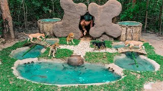 Download Rescued Abandoned Puppies Feeding Building Mud Bone Dogs And Fish Pond (FULL VIDEO) Video