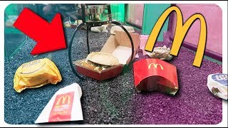 Download WINNING McDonald's FROM THE CLAW MACHINE!!! Video