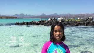 Download Itzayana #MyOceanPledge Islands and Protected Areas of the Gulf of California Video