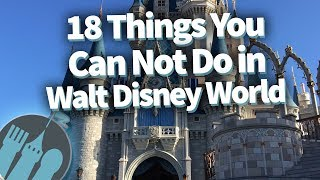 Download 18 Things That Had To Be BANNED In Disney World! Video