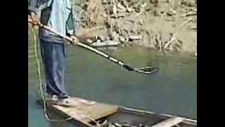 Download صيد سمك Video