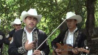 Download LOS TRINOS -Se Nos Murio El Amor Video