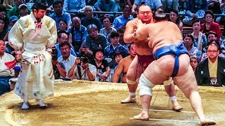 Download JAPAN NATIONAL SUMO TOURNAMENT! Video