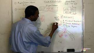 Download Hyperkalemia Video Lecture made simple! HD Video