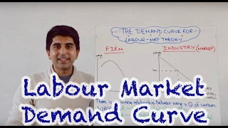 Download Labour Demand Curve (Market and Firm) Video