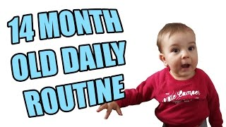 Download 14 Month Old Daily Routine Video